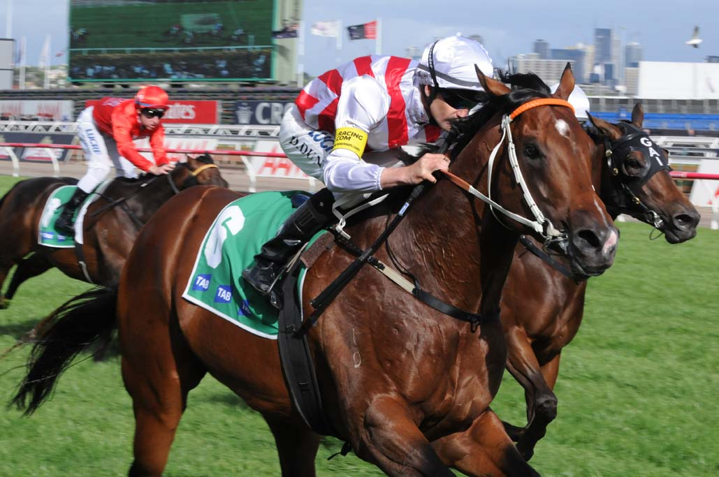 Sky Racing_horse racing with TAB branding_generic_LR