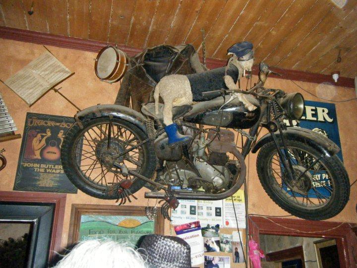 Break O Day Hotel_sheep on bike_Debra